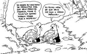 tartaruga deus